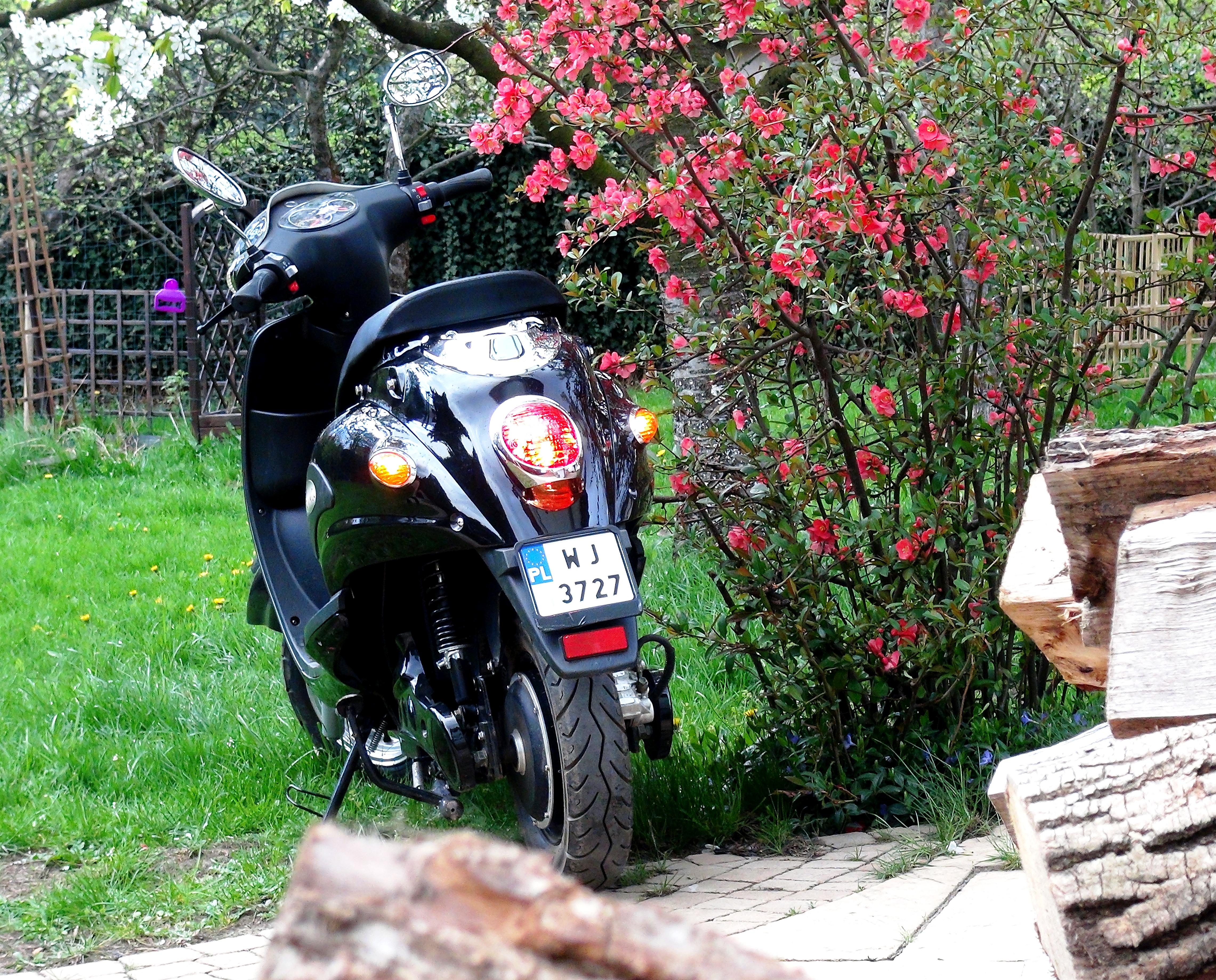 005-Evka-w-kwiatach-i-z-drewnem